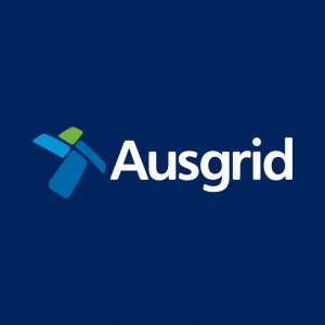 Ausgrid Electricity Safety Navy